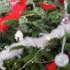 Pour Noël offrez des cadeaux autour du potager!