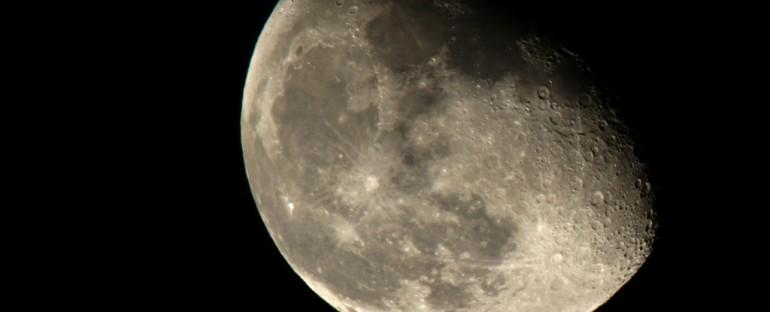 Jardiner avec la lune au potager en juillet - Jardiner avec la lune ...