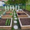 Le Top 5 des fruits et légumes à cultiver dans son potager