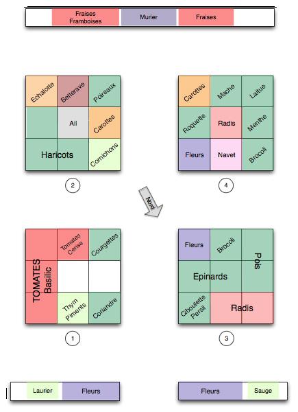 Planification des cultures du potager en carrés