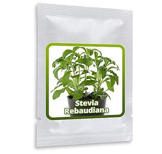 Sachet de 100 graines de Stevia