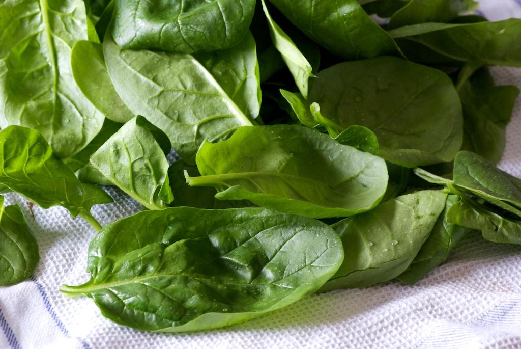 10 Legumes Faciles A Cultiver Pour Le Potager Du Debutant