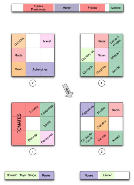 Plan du potager Août 2010