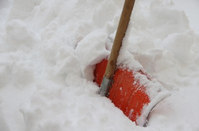Grosses chutes de neige au jardin