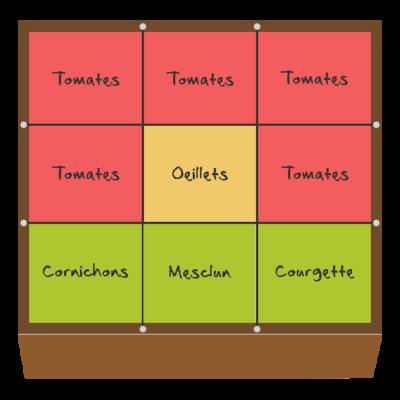 Planification des cultures pour juillet et août dans le deuxième carré
