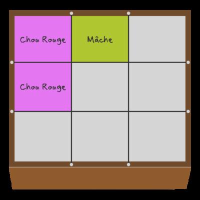 Planification des cultures pour janvier et février dans le troisième carré