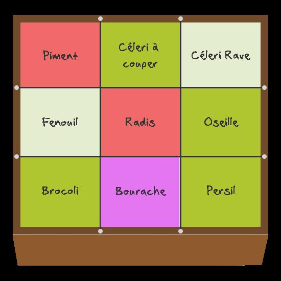Planification des cultures pour mai et juin dans le troisième carré