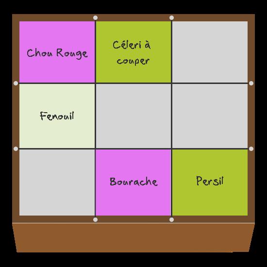 Planification des cultures pour mars et avril dans le troisième carré