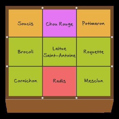 Planification des cultures pour mai et juin dans le quatrième potager en carré