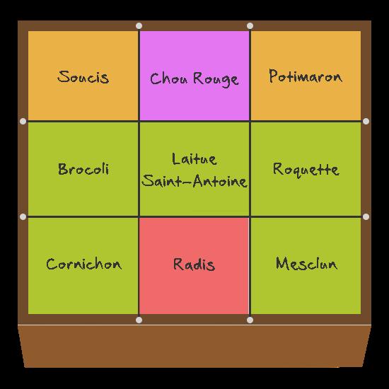 Planification des cultures pour mai et juin dans le quatrième carré