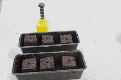 quelques mottes prêtes à accueillir des graines