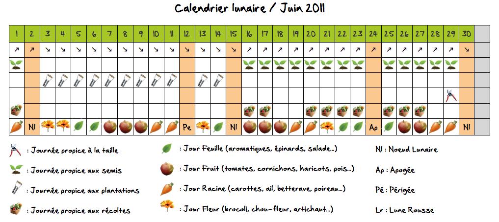 Jardiner avec la lune au potager en juin for Calendrier plantation jardin potager