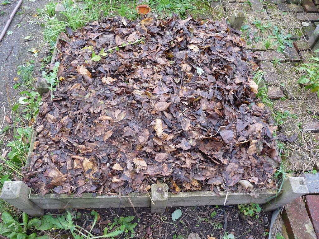 Pr parer votre potager en carr pour l hiver - Couvrir arbuste pour l hiver ...