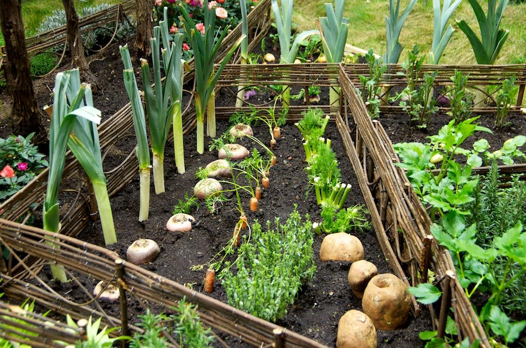 ma journ e de jardinier au salon de l 39 agriculture. Black Bedroom Furniture Sets. Home Design Ideas