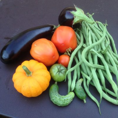 Haricots Tomates et Aubergines