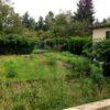 nouveau jardin