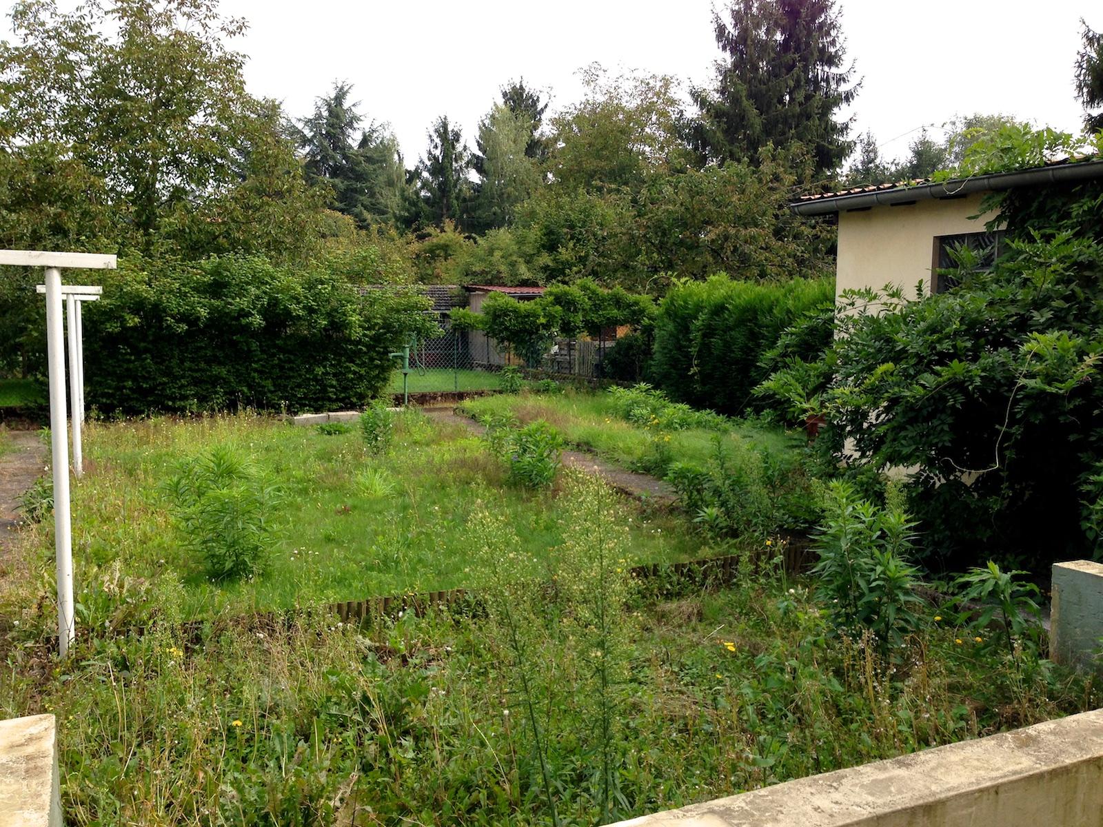 premiers contacts avec le nouveau jardin autour du potager