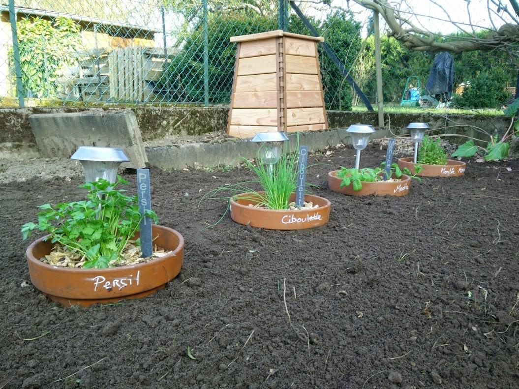Un point sur l 39 avancement des travaux au jardin potager for Plantes aromatiques