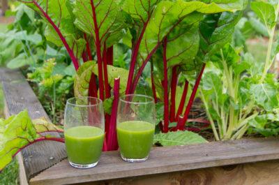 Jus vert avec les légumes du potager