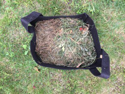 Tonte de gazon dans compost