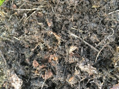 Le compost en pot avant le tamisage