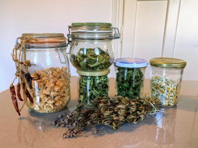 Conserver ses récoltes en les séchant
