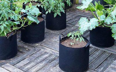 Avis sur les sacs à planter
