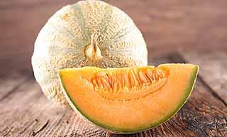 variétés de melon