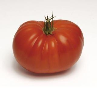 Tomate supersteack