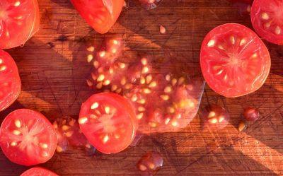 Comment récolter ses graines ?