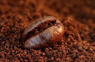 Grain de café et marc