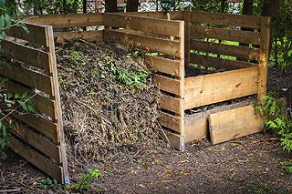 Marc de café dans le compost