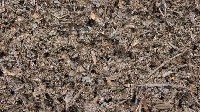 Compost de feuilles et d'écorce de copeaux de bois