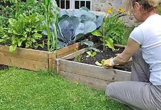 potager surélevé pour sol ingratpotager surélevé pour sol ingrat