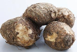 Corme (bulbe) de Colocasia esculenta