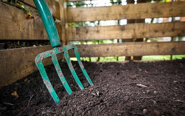 Au potager en février, veillez à fertiliser le sol.