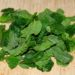 Conserver et utiliser la menthe du potager