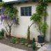 De la place pour les fleurs au jardin? #1 à l'ombre
